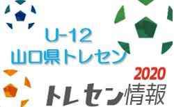 【メンバー】2020年度 JFAトレセン U-12 山口少年選考会 選考結果のお知らせ 情報頂きました!