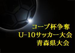 2020年度 コープ杯争奪第11回青森県U-10サッカー大会全試合結果掲載!優勝はクラッキス!