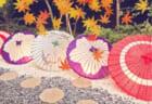 北海道・東北地区の今週末のサッカー大会・イベント情報【10月24日(土)、25日(日)】