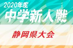 2020年度 静岡県中学校Uー14新人サッカー大会 静岡県大会 出場37チーム決定!12/5~12/19開催