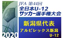 がんばれアルビレックス新潟U-12!第44回全日本U-12サッカー選手権大会 新潟県代表・アルビレックス新潟U-12紹介