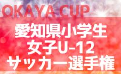 2020年度 OKAYA CUP/オカヤカップ 第38回愛知県小学生女子U-12サッカー選手権大会 組み合わせ掲載!12/19,20開催!