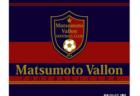 2020年度 高円宮杯 JFA U-18 サッカーリーグSリーグ(埼玉県) 11/28,29結果更新!
