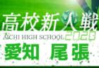 【大会中止】2020年度 愛知県高校新人体育大会 サッカー競技 新人戦  知多支部予選 1/9結果掲載!