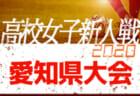 【2/7まで中止・開催未定】2020年度 愛知県高校新人体育大会 サッカー競技 新人戦  愛知県大会