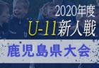 2020年度 兵庫県高校サッカー新人大会・但馬支部予選 県大会出場は豊岡、豊岡総合!決勝・3決の情報提供お待ちしています