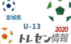 【メンバー】宮城県トレセンU-13 12月練習会 メンバー掲載!