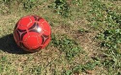 2020高崎カップU-12サッカー大会(群馬)D優勝はTⅡ・United!E優勝は青だるま!F結果お待ちしております