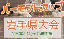 2021年度 JFAバーモントカップ 第31回全日本 U-12フットサル選手権 岩手県大会 サンアルタス大船渡が全国へ!