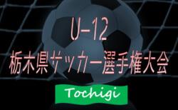 【大会中止】2020年度 U-12栃木県少年サッカー選手権大会(旧 選手権の部)166チーム出場、2/7~23開催予定が中止!多くの情報ありがとうございました!