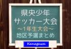 【大会中止】2020年度 第23回兵庫県中学生(U-13)サッカ-選手権大会 2/6~開催予定 地区予選も中止