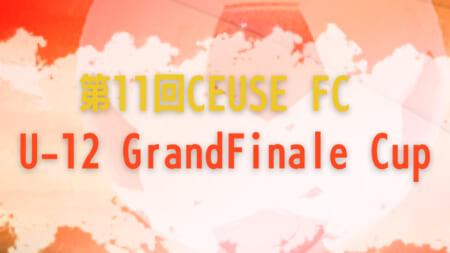 2020年度 第11回CEUSE FC U-12Grand Finale Cup(静岡県) 2/27予選リーグ一部結果掲載!2/28結果速報!