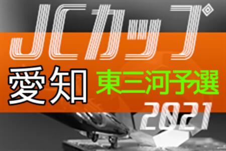 2021年度 JCカップ U-11少年少女サッカー大会 東三河予選(愛知)情報お待ちしています!