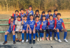 2020年度 サッカーカレンダー【和歌山県】年間スケジュール一覧