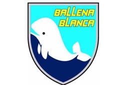 Ballena Blanca城北レディース(バジェーナブランカ) 選手募集 随時開催 2021年度 東京