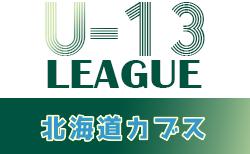 2021年度 第13回北海道カブスリーグU-13 日程表掲載!4/17開幕!