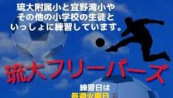 琉大フリーバーズ 新入部員募集!2020-2021年度 沖縄県