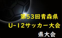 2021年度AOFA第53回青森県U-12サッカー大会組合せ決定!6/12,13,19開催!