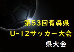 2021年度AOFA第53回青森県U-12サッカー大会6/12,13,19開催!