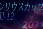2021年度 和歌山県U-12サッカー選手権大会 海南海草予選 優勝は海南FCジュニア!3位決定戦の情報提供お待ちしています