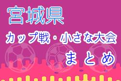 2021年度 5月6月 宮城県のカップ戦 小さな大会まとめ ☆ 随時更新!6/6シェルコムカップ U-9 優勝はMESSE宮城FC!