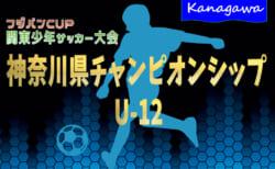2021年度 神奈川県チャンピオンシップU-12 兼 関東少年サッカー大会 県予選 組合せ決定!7/17開幕!出場チーム&地区予選情報まとめました!