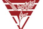 【優勝写真掲載】2021年度 西部キッズU-10 サーラカップ 浜松予選大会(静岡)優勝はキューズFC浜松!県大会出場8チーム決定!
