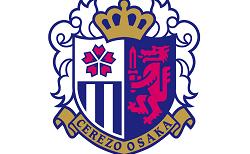 セレッソ大阪和歌山 ジュニアユース 1次セレクション 10/31開催! 2022年度  和歌山